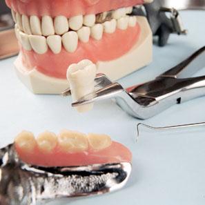 Irány a fogorvosok tevékenység