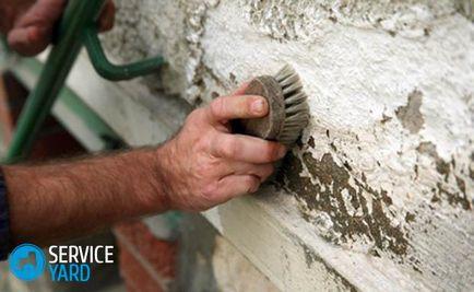 Penész a falon a lakásban - mi a teendő, serviceyard-kényelmes otthon kéznél