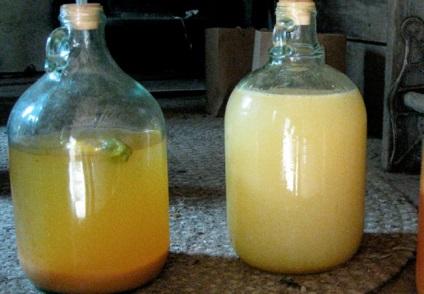 Сделать яблочное вино в домашних условиях 215