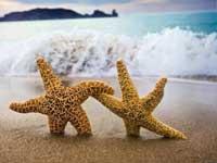 Творческий отпуск в две тыщи девятнадцать году для  Творческий отпуск в две тысячи семнадцать году для педагогов порядок предоставления для написания