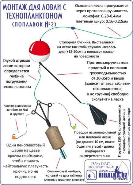 Планктон для ловли толстолобика своими руками рецепты 710