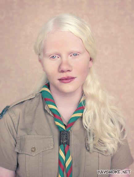 24 albínó állat, amiről nehéz elhinni, de tényleg valódi