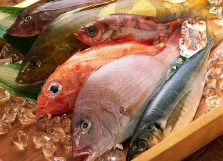 Sen interpretacji snów jakie ryby