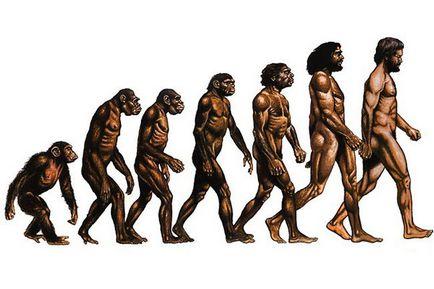 emberi evolúció és paraziták