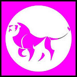 Cum să revenim un leu, să facem pace cu lei de către bărbați și femei