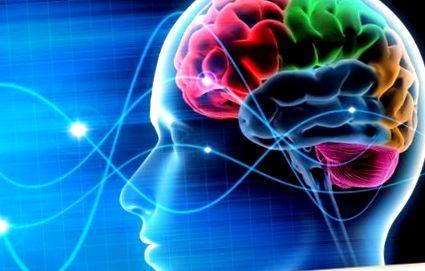 modul în care viziunea afectează creierul)