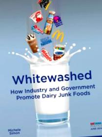 whitewash jelentése