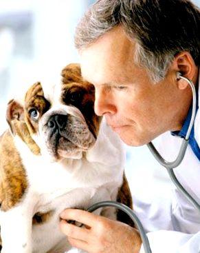 magas vérnyomás kezelése gyógyszerekkel férfiaknál