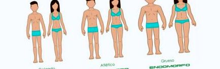 macrocomenzi de pierdere în greutate pentru endomorf pierderea în greutate înseamnă în urdu