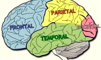 cum funcționează viziunea umană și creierul miopie așa cum este indicat