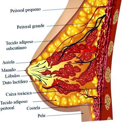 fertőzések tünetei