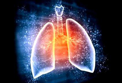 paraziták a tüdőben és az emberek hörgőiben