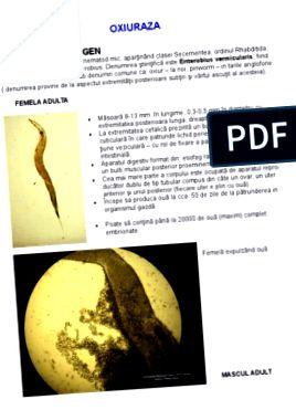 az enterobiasis és a helmintusok ugyanazok)