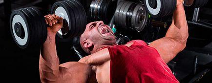 Cum de a pompa ghid de greutati pentru incepatori