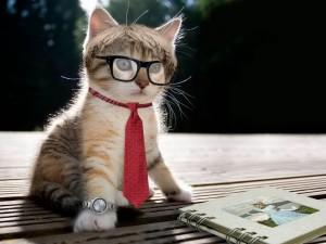 porecle cool și amuzante pentru câini și pisici