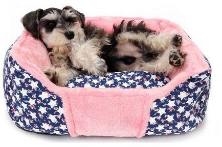 Paturi pentru câinele cu propriile sale mâini, model, cum să coase, fotografii