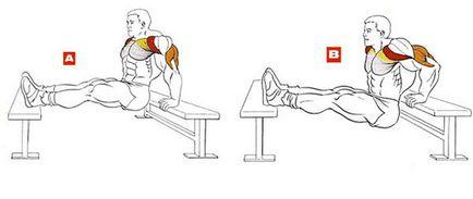 Cum de a construi cele mai bune exerciții triceps