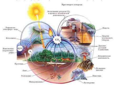 Ciclicitatea materiei - o